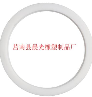 密封垫片图片/密封垫片样板图 (2)