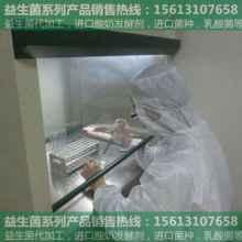东阳益生菌饲料添加剂|益生菌报价|新产品