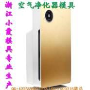 浙江塑胶空气净化器模具制造图片
