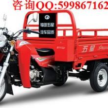 供应福田五星175ZH-6三轮摩托车 厂家