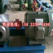 济南FXB外润滑不锈钢齿轮泵图片