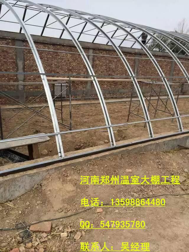 供应用于蔬菜种植|果树育苗|香菇的几字钢拱棚简易塑料大棚