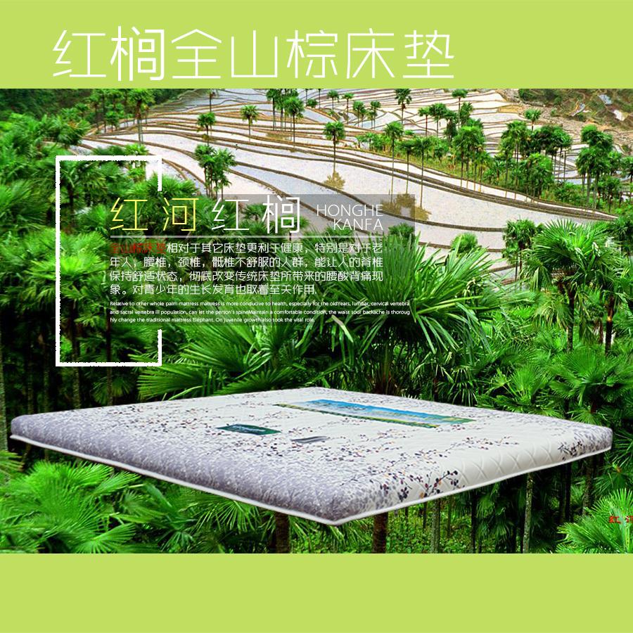厂家直销 无胶山棕床垫片丝系列6厘米厚 质量保证