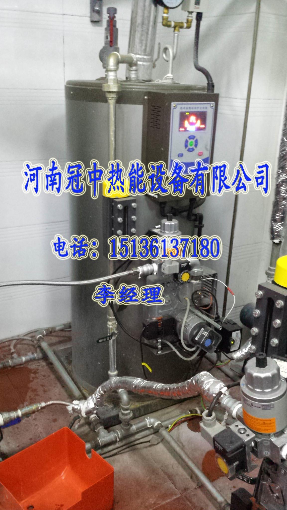 供应辽宁燃气蒸汽发生器