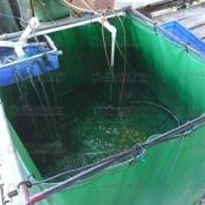 养殖渔业帆布图片