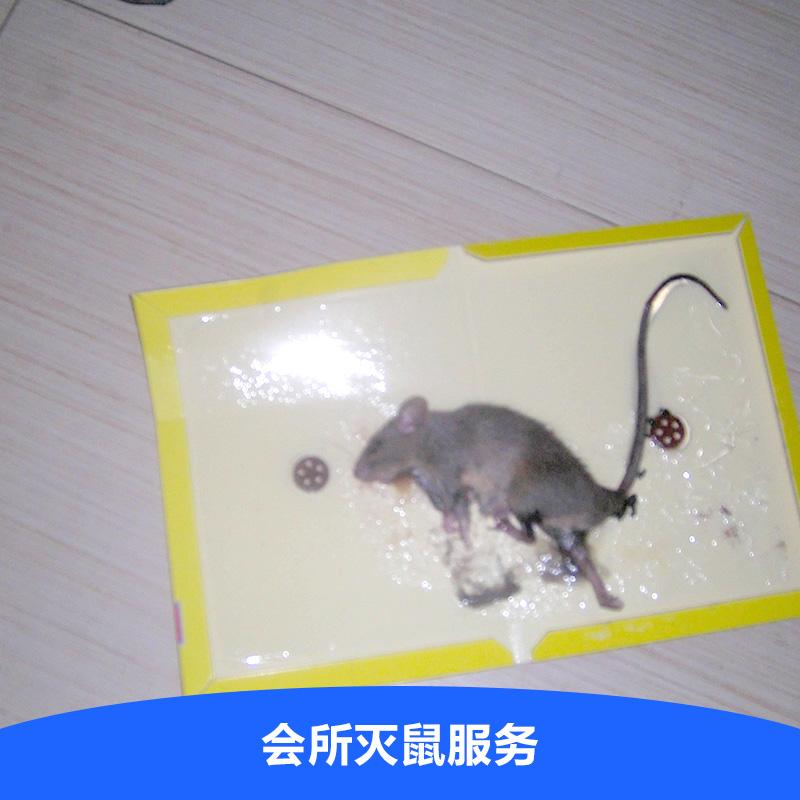 高压灭鼠倍压电路图