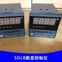 SDLB数显控制仪图片