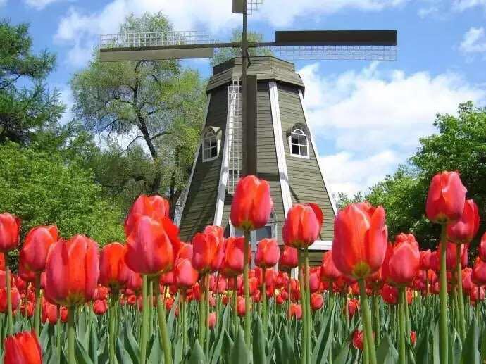 供应烟台生产荷兰风车模型低价出售