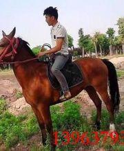 http://imgupload2.youboy.com/imagestore201603254fcd56d1-fffc-4ffe-8733-8bfa854a249c.jpg