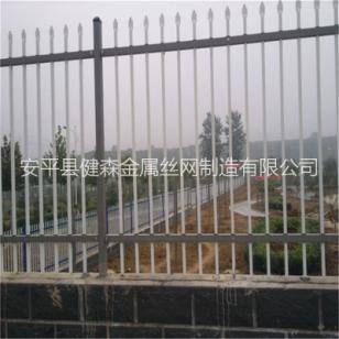 铁艺护栏围网图片