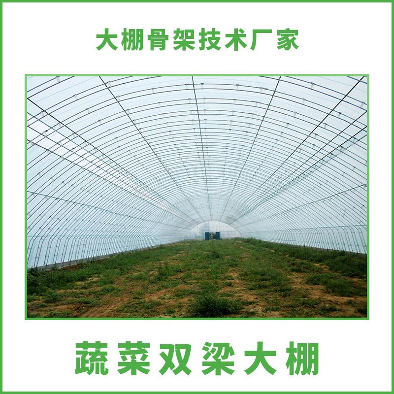 供应蔬菜双梁大棚 蔬菜双梁大棚搭建技术 温室蔬菜大棚 蔬菜双梁大棚价格