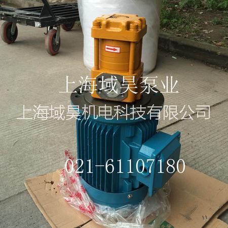 供应剪板机NT5-G125F齿轮泵