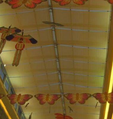 上海电动天棚帘图片/上海电动天棚帘样板图 (3)
