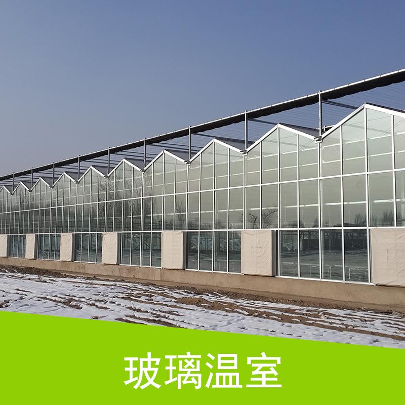安徽 玻璃温室 连栋玻璃温室大棚 钢结构玻璃阳光房采光生态温室大棚
