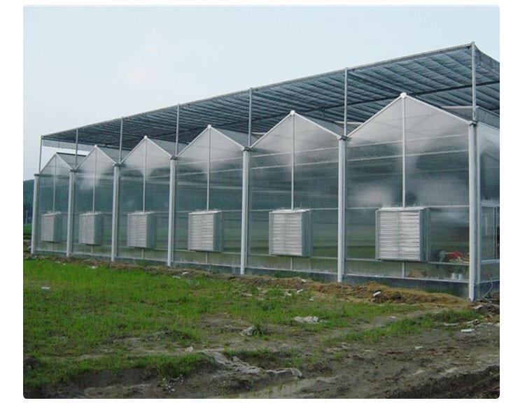 温室连栋大棚