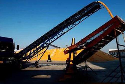 运输玉米图片/运输玉米样板图 (4)