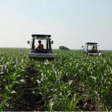 专业厂家提供玉米深松机