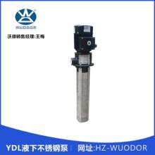 YDL液下不锈钢泵 不锈钢耐腐蚀泵 耐酸碱液下泵 立式长轴液下泵批发