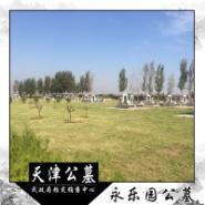 天津市永乐园公墓网图片