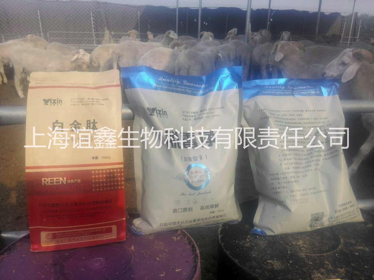 供应牛羊专用白金肽 牛羊催肥添加剂 无抗养殖  促进消化吸收