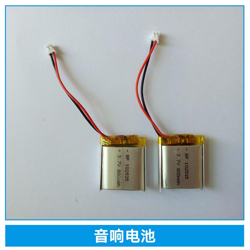 音响电池多少钱\插卡音响音箱用扩音器音响/寻星仪带保护电池
