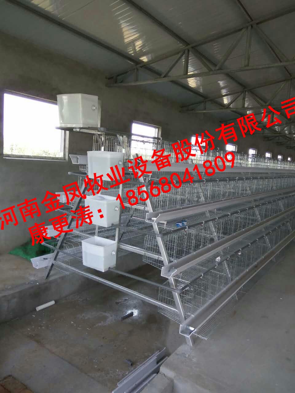蛋鸡笼,供应厂家生产蛋鸡笼,鸡笼设备,养鸡设备,3层蛋鸡笼,阶梯式蛋鸡笼,自动化蛋鸡笼