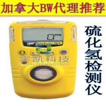 硫化氢检测仪加拿大BWGAXT-HH2S硫化氢气体检测仪