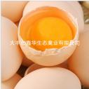 生态养殖场低价批发专供农家乐高品质田园散养草鸡蛋