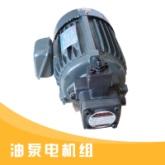 油泵电机组出售具有紧凑体积小重量轻振动小噪音低使用方便价格实惠油泵电机组厂家供应