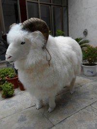 仿真动物皮毛仿真绵羊仿真动物仿真绵羊厂家批发仿真动物仿真绵羊商家