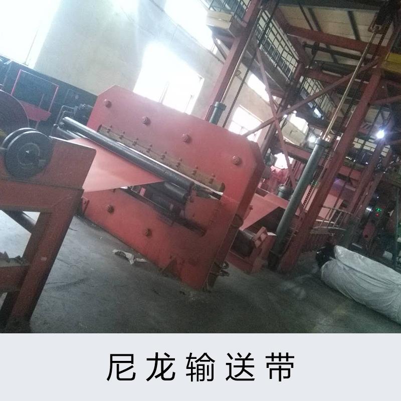 浙江尼龙输送带 杭州传送带厂家  宁波橡胶制品报价