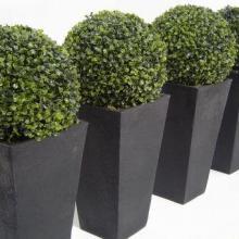 上海滚塑花盆生产厂家 上海滚塑花盆定做 上海滚塑花盆加工 旋塑成型模具花盆定做生产加工图片