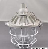 西安飞越防爆灯具  BAD51 西安飞越防爆灯具 LED防爆灯