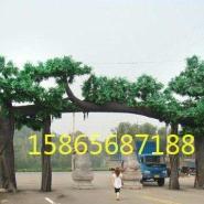 池州假树大门图片
