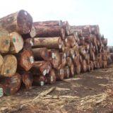 芬启木业菠萝格出售厂家直销,优惠促销,特价批发,批发代理