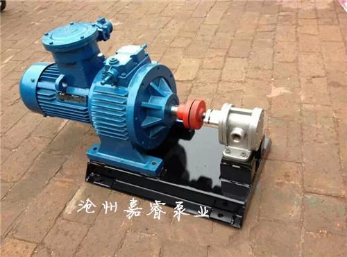 2CY-3/2.5系列齿轮油泵 不锈钢齿轮油泵 嘉睿泵业   2CY齿轮油泵