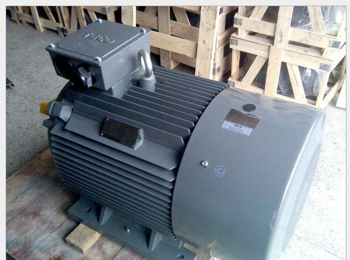 东元电机 15KW 4P AEEVVS 卧式3相 380V