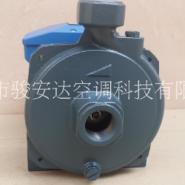广东冷水机泵图片