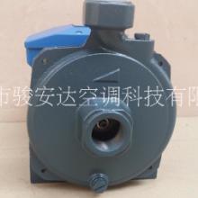广东冷水机泵cm-50冷水机泵 增压泵220v离心泵 铸铁泵 增压泵现货批发批发