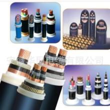 ZB-KYJV 控制电缆  扁电缆 控制电缆 特种电缆价格 煤矿电缆