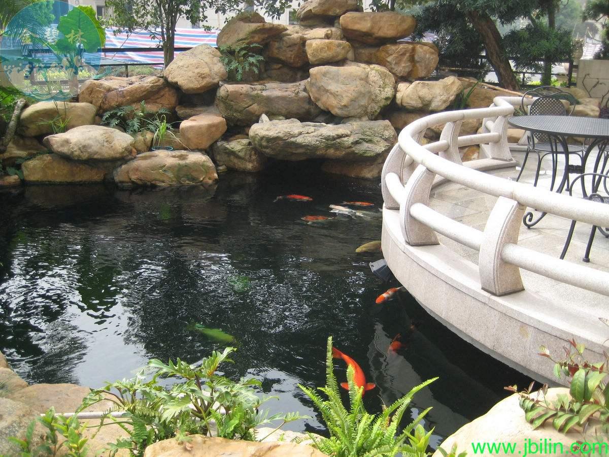 户外别墅大型鱼池设计制作报价