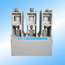 高压永磁真空接触器(晨诺电气)投切电容器真空接触器批发