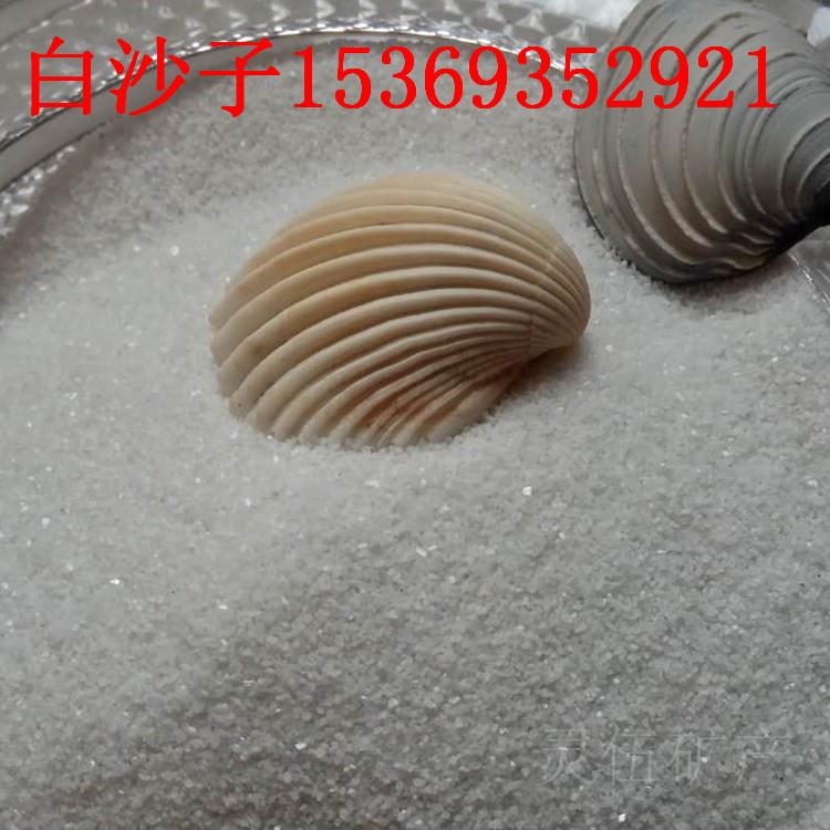 儿童游乐园沙子 儿童沙堡沙子 圆粒海沙价格 白沙子用途