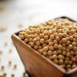 大豆多肽 大豆肽与运动
