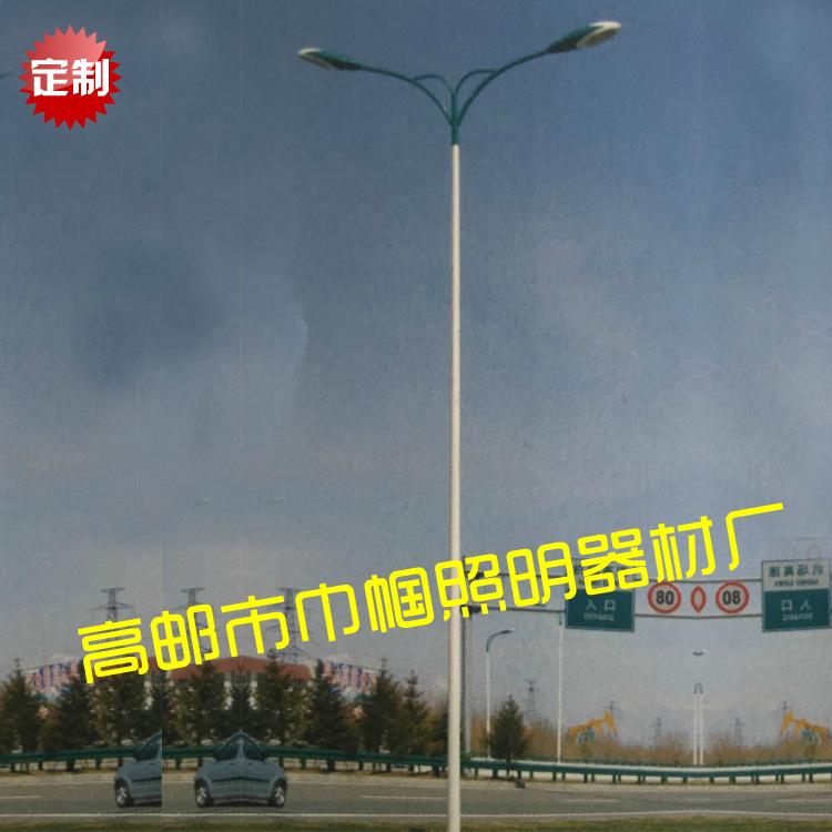 马路灯 ED120W 10米双臂 道路 公园 厂房照明路灯厂家直销