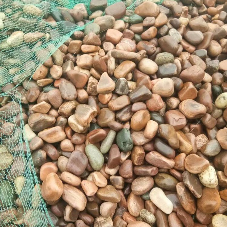 造景鹅卵石 变压器鹅卵石  园林造景鹅卵石  污水处理卵石  铺路用卵石