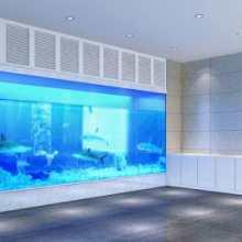 杭州水族参观玻璃观赏鱼缸