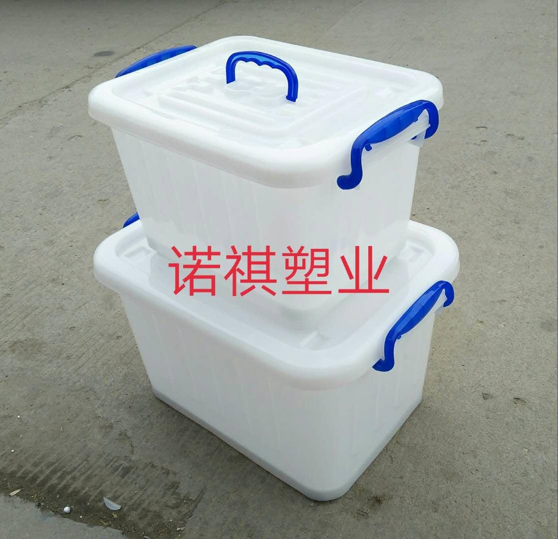 山东塑料保鲜盒   泰安塑料保鲜盒批发  菏泽塑料保鲜盒报价