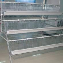 鸡笼丝厂家热镀锌丝厂家笼具丝厂家2.0mm-5.0mm