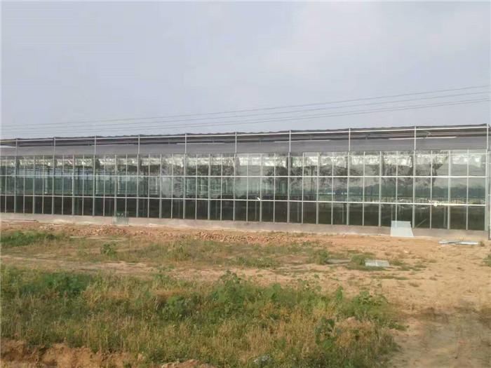 玻璃温室维修功能及特点产品的选用 建设玻璃温室多少钱一平方